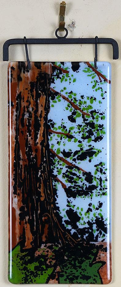 BarbaraG-Redwoods-Sale-Web.jpg