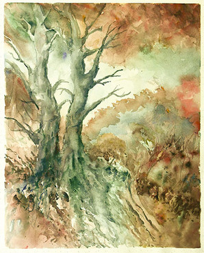 Trees In Red Scrubland-Lorraine Vallero