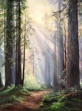6 - Autumn Trail - Rebecca Holland