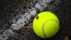 Tennis Davis Cup by the official broadcaster 1 Play Sports