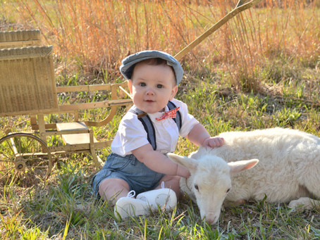 Easter Mini Sessions Have Been Announced!