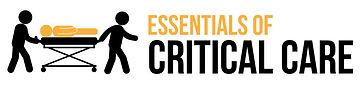 Essentialsofcriticalcare2(1)_edited.jpg