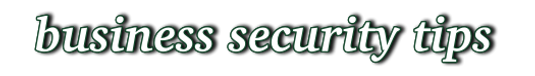 Business Security.png