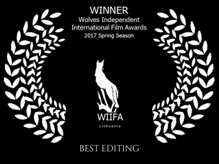 'Filling In' Wins BEST EDITING at WIIFA in Lithuania