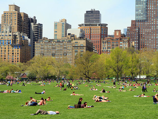The role of Democracy in Design : A case of Central Park, NY