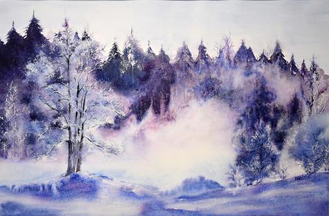 les arbres silencieux