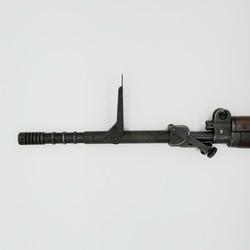FN49-Egyptian-ML