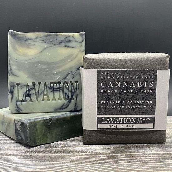 Cannabis/Beach Sage/Rain