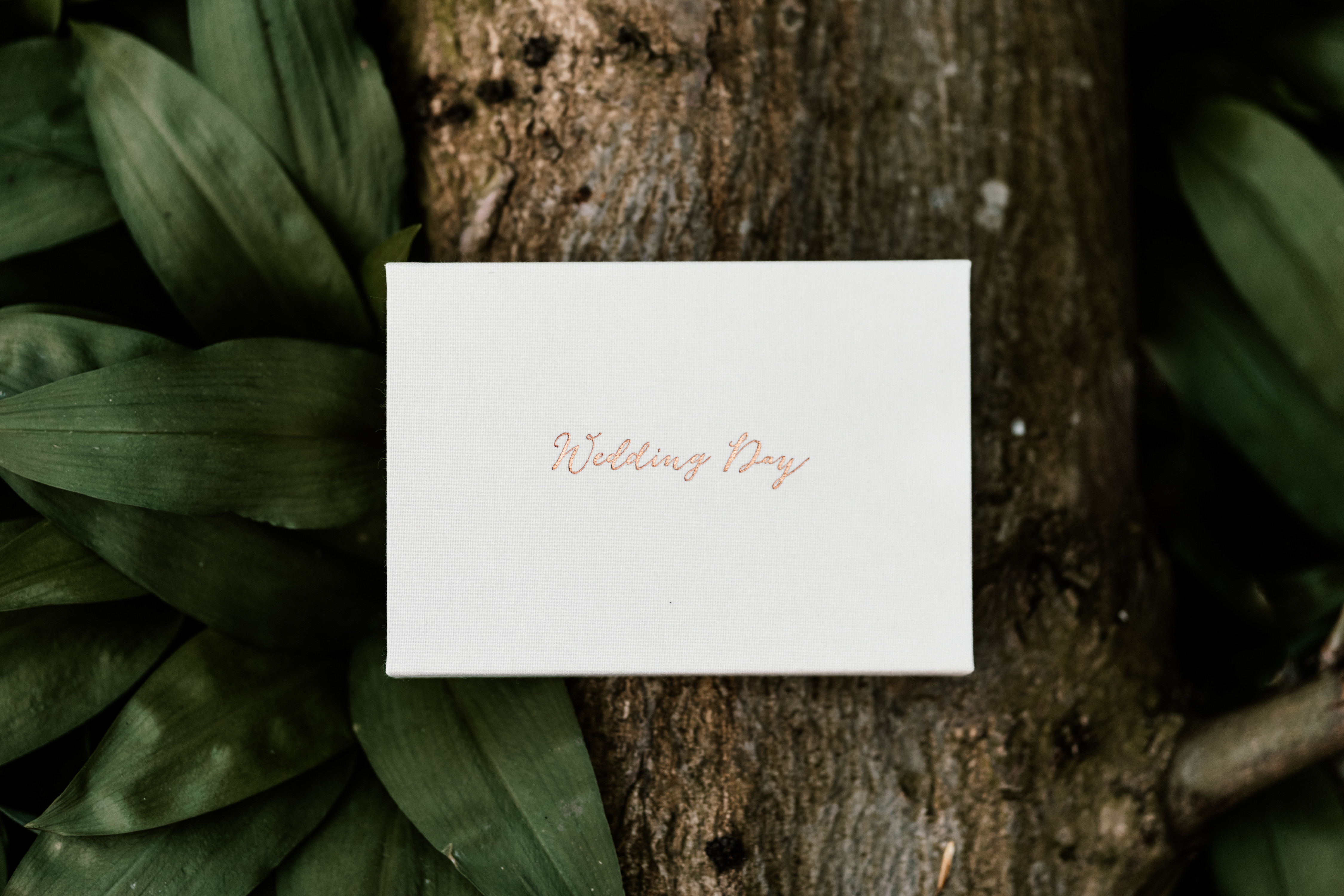 Full Day Wedding Photo Package