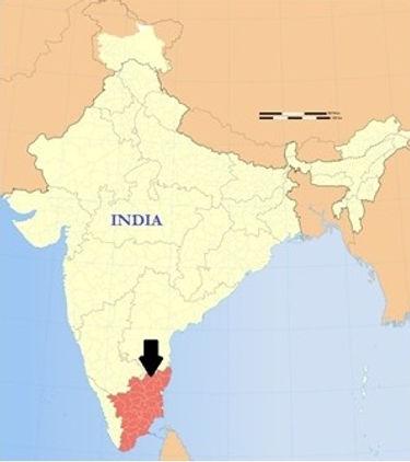 Sebs Trust South India NGO