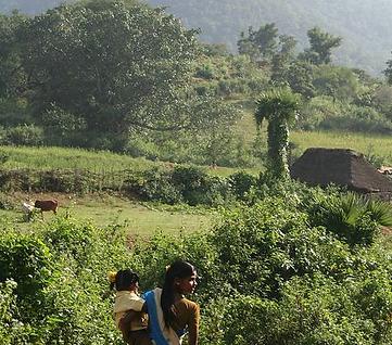 Sebs Trust Eco Trail Jawadi Hills Southern India NGO