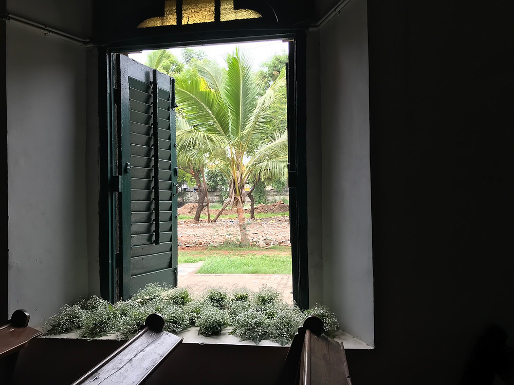 Flowers by the window sill with a coconut tree in the background
