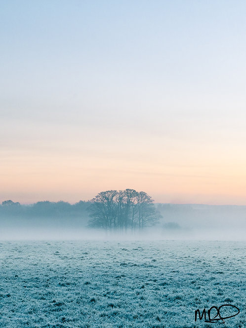Winter Sunrise in Croxteth Park
