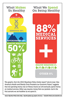 Costs of healthy behaviors vs medical services.