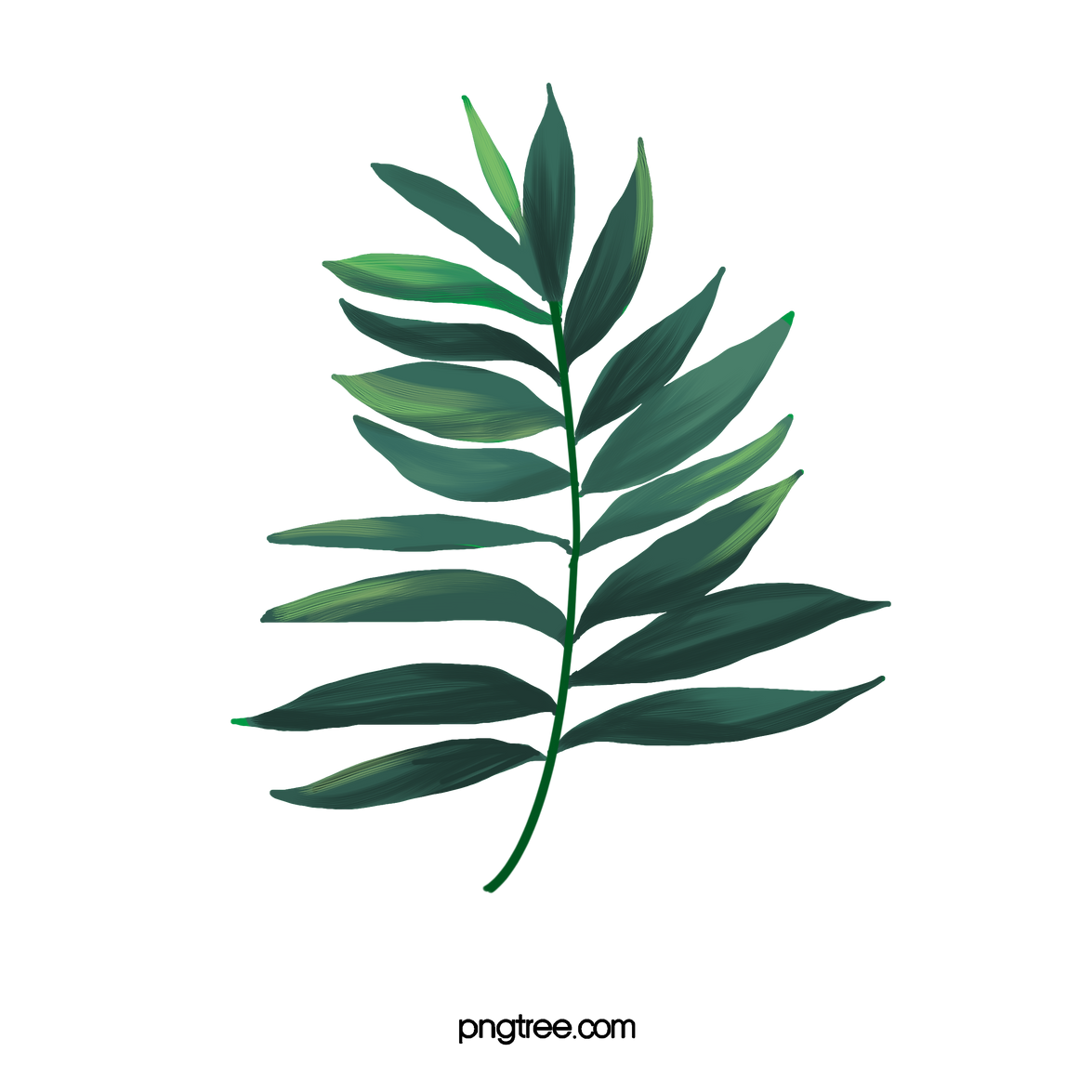 —Pngtree—watercolor leaves_2846027.png