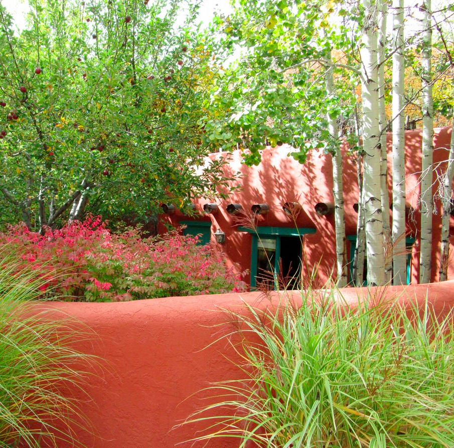 Brilliant natural colors and adobe walls in walled Santa Fe garden.