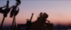 Screenshot 2020-05-03 at 10.39.07.png