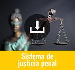 Plan País Venezuela - Justicia Penal