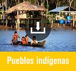 social_-_pueblos_indígenas.png