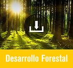desarrollo forestal.png