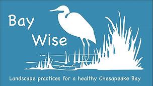 Baywise_logo.jpg