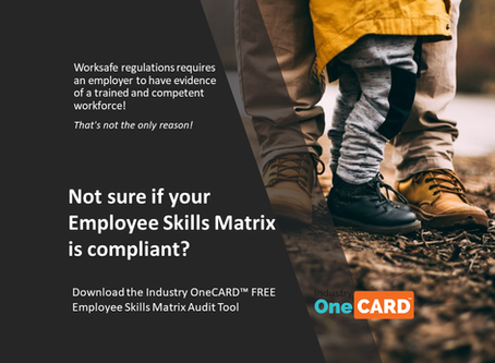 FREE Skills Matrix Audit TOOL Now available for SME's