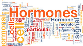 Hormones - Spotlight on Cortisol