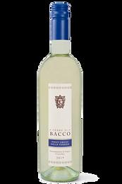 Pinot Grigio delle Venezie DOC - Terre di Bacco