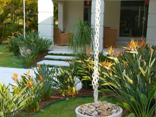A importância do paisagismo em projetos residenciais