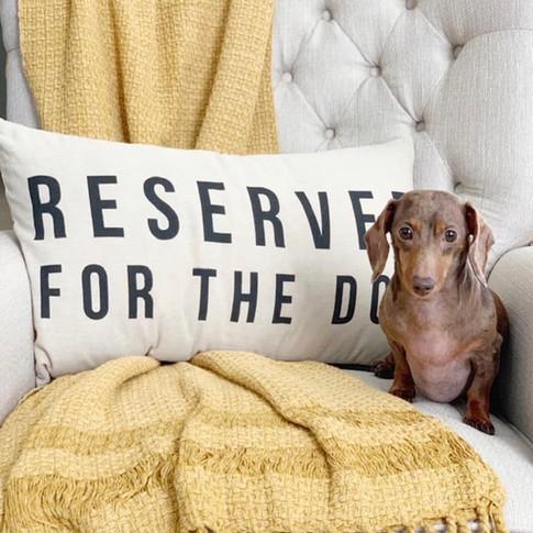 RSVD for the dog .jpg