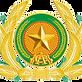 Vietnam_People_Public_Security_insignia.