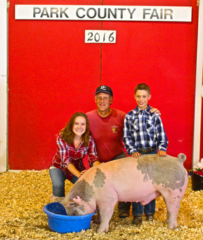We love being involved in the Park County Fair. We never miss a chance to buy some of the animals raised by these hard working kids.