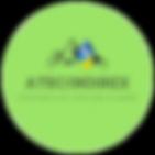 2Atec_Indirex-.png