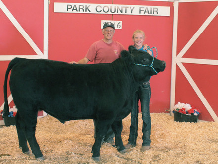 Another steer we purchased.