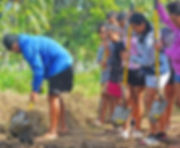 Teina digging.jpg