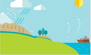 Identifier les états et phases du cycle de l'eau.