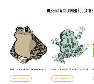 Dessins à colorier éducatifs