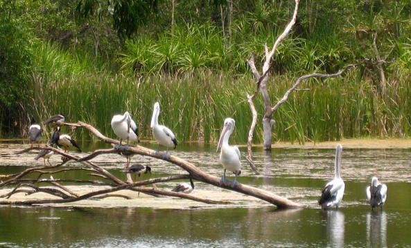 territory-wildlife-park