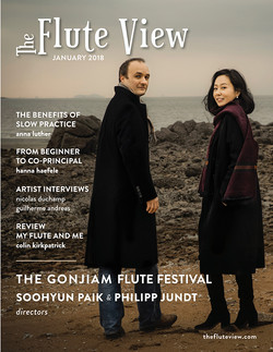 Flute View Cover, 2018
