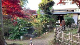 Kyoto-style garden next to Kiyomizu House