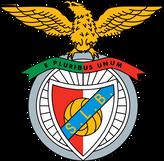 Benfica logo for VirtualOffice
