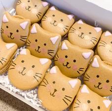 Kitty Cat Vanilla Macs
