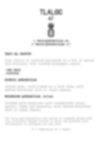 GP Tlaloc menu pg2.png