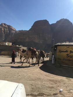 Wadi Rum village