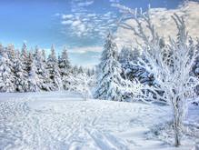 Eight Winter Warmer Tips