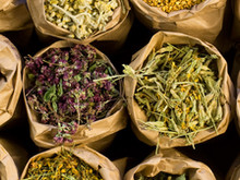 40 Herbal Antivirals That Your Immune System Will Thank-You For
