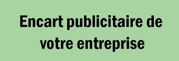 Encart publicitaire 3.jpg