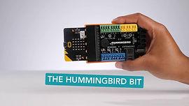Hummingbird Bit.jpg
