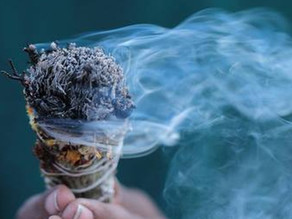 Les 4 meilleures plantes pour la purification smudge