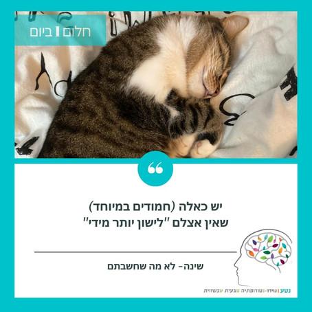 """""""היגיינת שינה"""" או איך נישן כמו חתול"""